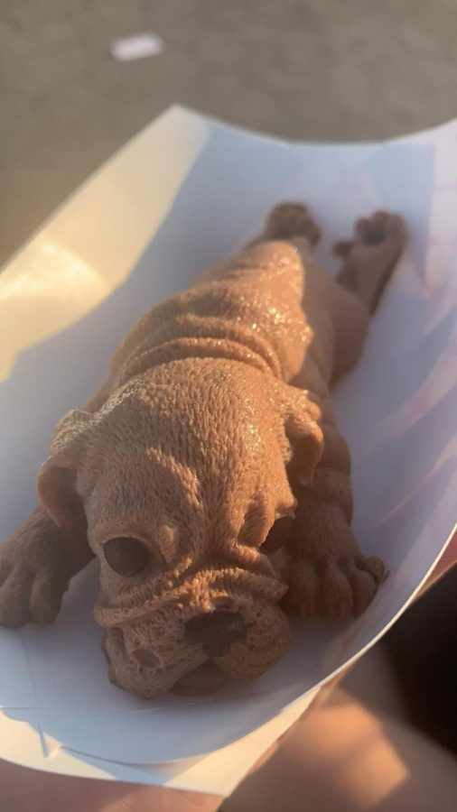 Cute bulldog chocolate mousse that tasted more like butter cream than mousse